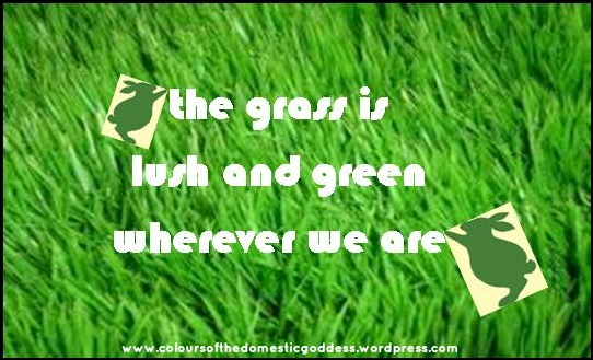The grass is lush and green wherever we are